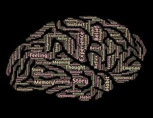 The Brain - https://www.johnhain.com